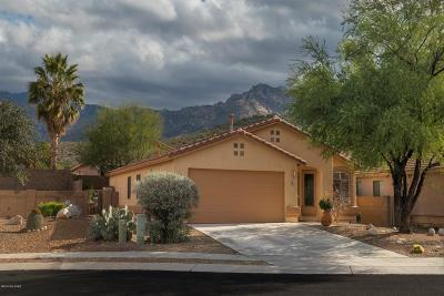 Tucson Single Family Home For Sale: 11362 N Old Ram Court