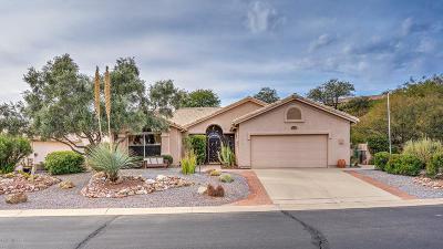 Tucson Single Family Home For Sale: 37492 S Desert Star Court