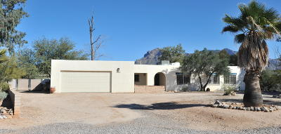 Tucson Single Family Home For Sale: 1700 W Chapala Drive