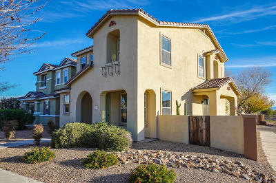 Sahuarita Single Family Home For Sale: 20 W Paseo Celestial