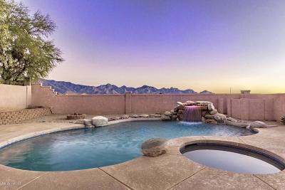 Tucson Single Family Home For Sale: 60207 E Verde Vista Court