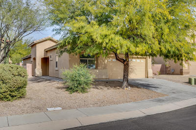 Sahuarita Single Family Home For Sale: 951 E Spring Water Canyon Drive