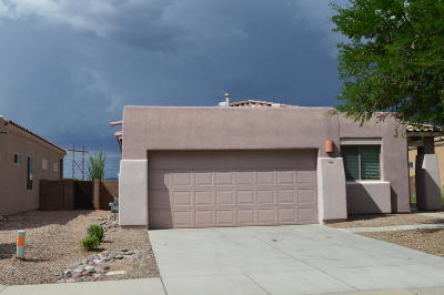 Tucson Single Family Home For Sale: 7536 W Sweet River Road