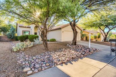 Tucson Single Family Home For Sale: 2981 W Calle Lucinda