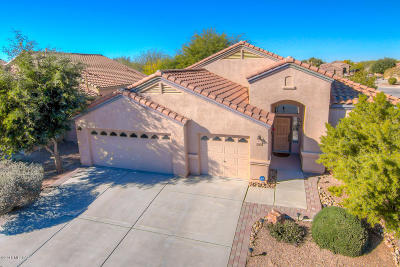 Tucson Single Family Home For Sale: 7396 S Velvet Willow Way