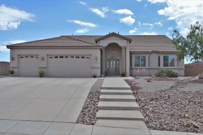Cochise County Single Family Home For Sale: 3725 La Terraza Drive