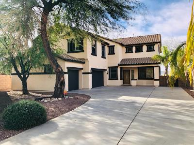 Tucson Single Family Home For Sale: 950 E Gibbon River Way