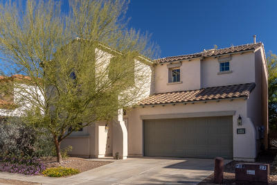 Sahuarita Single Family Home For Sale: 14805 S Camino Tierra Del Rio