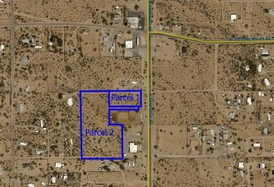 Tucson Residential Lots & Land For Sale: 6651 N Sandario Road