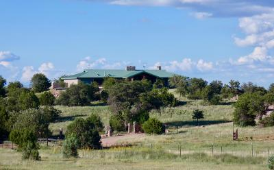 Sonoita Single Family Home For Sale: 1 Sherwood Forest Lane