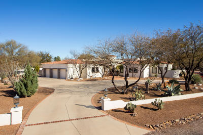 Tubac Single Family Home For Sale: 16 Calle Diaz
