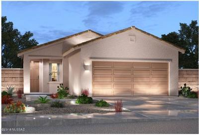 Sahuarita Single Family Home For Sale: 934 E Prairie Field Lane