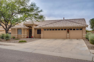 Tucson Single Family Home For Sale: 10680 E Marquette Street
