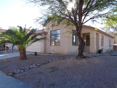 Tucson Single Family Home For Sale: 9142 E Dawn Post Road