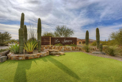 Marana Single Family Home For Sale: 6615 W Whispering Windmill Lane