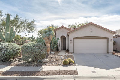 Tucson Single Family Home For Sale: 7701 W Summer Scene Drive
