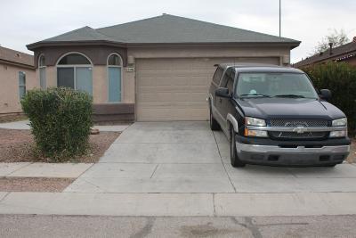 Single Family Home For Sale: 6346 S Acacia Desert Avenue