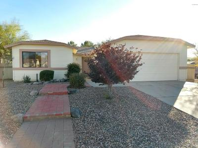Tucson Single Family Home For Sale: 2671 W Bensbrook Place