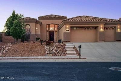 Oro Valley Single Family Home For Sale: 12841 N Mystic View Place