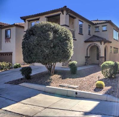 Sahuarita Single Family Home For Sale: 438 E Calle De Ocaso