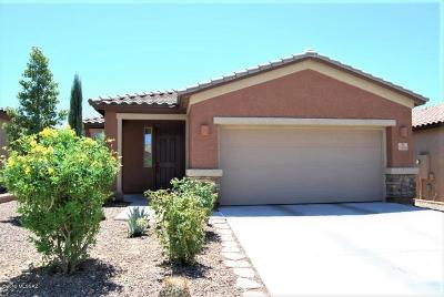 Marana Single Family Home For Sale: 12088 N Meditation Drive
