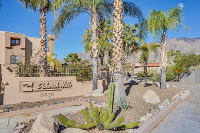 Tucson Condo For Sale: 5675 N Camino Esplendora, Unit 2111