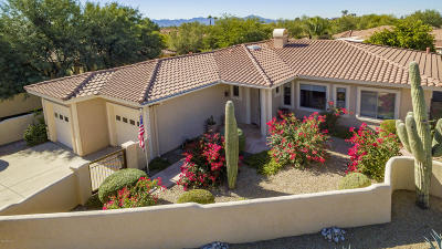 Tucson Single Family Home For Sale: 9655 N Golden Sun Drive