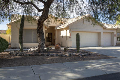 Oro Valley Single Family Home For Sale: 12455 N Echo Valley Drive