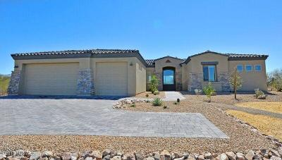 Sahuarita Single Family Home For Sale: 461 N Heritage Point Place