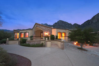 Tucson Single Family Home For Sale: 10310 N Cliff Dweller Place