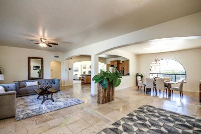 Tucson Single Family Home For Sale: 5221 N Foothills Drive