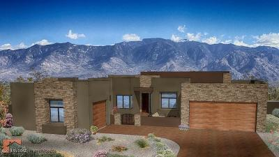 Pima County, Pinal County Single Family Home For Sale: 14840 E Redington- To Be Built Road