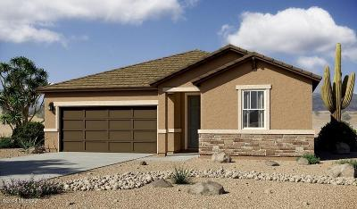 Marana Single Family Home For Sale: 11147 W Riverton Drive