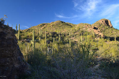 Tucson Residential Lots & Land For Sale: 7292 E Stone Canyon Drive