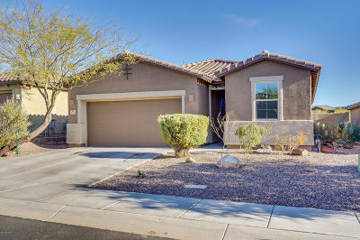 Marana Single Family Home For Sale: 12118 N Meditation Drive