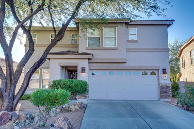Oro Valley Single Family Home For Sale: 13133 N Tanner Robert Drive