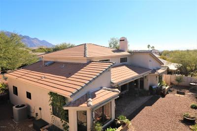 Tucson Single Family Home For Sale: 11131 N Olympic Place