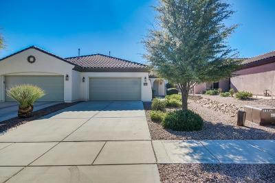 Sahuarita Single Family Home For Sale: 655 W Calle Montero