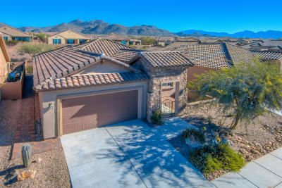 Marana Single Family Home For Sale: 6744 W Clear Creek Trail