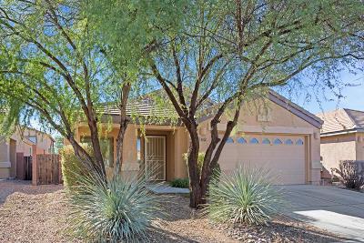 Pima County Single Family Home For Sale: 4020 E Stony Meadow Drive