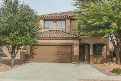 Sahuarita Single Family Home For Sale: 425 E Placita Costana