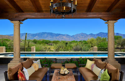 Oro Valley Single Family Home For Sale: 14292 N Giant Saguaro Place