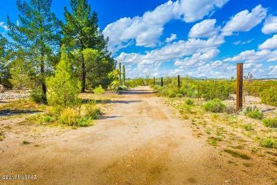 Pima County, Pinal County Single Family Home For Sale: 3800 S Harrison Road