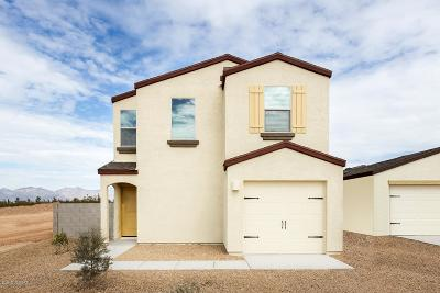 Pima County Single Family Home For Sale: 3961 E Braddock Drive E