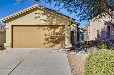 Pima County, Pinal County Single Family Home For Sale: 9971 E Denver Hill Drive