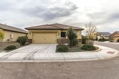 Marana Single Family Home Active Contingent: 11409 W Folsom Point Drive
