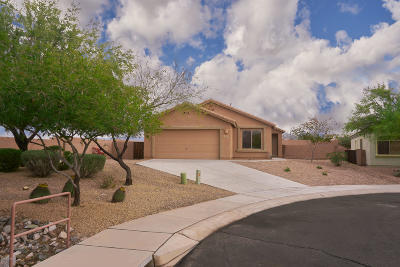 Marana Single Family Home Active Contingent: 14390 N Pipestone Place