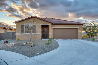 Tucson Single Family Home For Sale: 4879 W Willow Vista Court