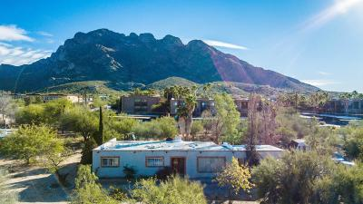Single Family Home Active Contingent: 8960 N Shadow Mountain Drive