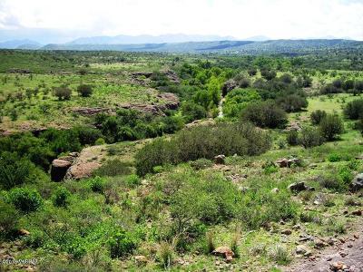 Rio Rico Residential Lots & Land For Sale: 260 Camino Las Barrancas #69/2